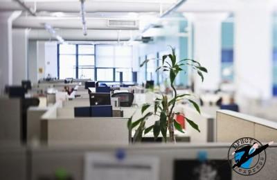 Если ликвидируется фирма - как происходит увольнение работника